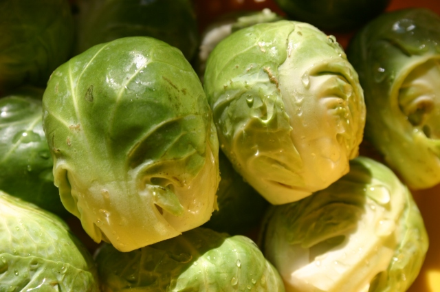 WashedBrusselsSprouts