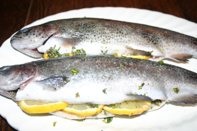 Trout stuffed