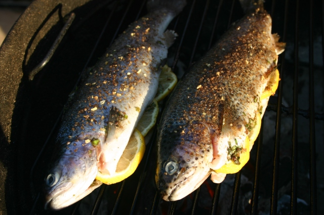 Trout on the Grill