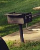 Grill Picture